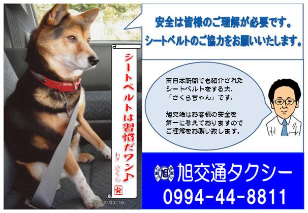 無20130517題.png