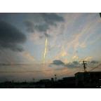 NEC_0238.jpg