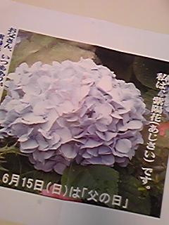 080627_182703.jpg