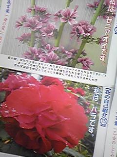 110510_134008.jpg