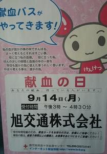 DSC_4181 - コピー.JPG