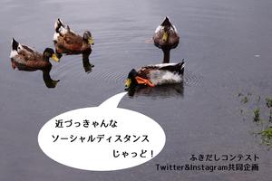 ふきだしコンテスト�B決定Instagram.jpg