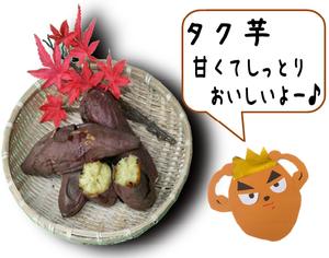 タク芋宣伝.png
