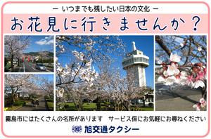 旭交通観光桜.png