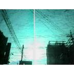 NEC_0231.jpg