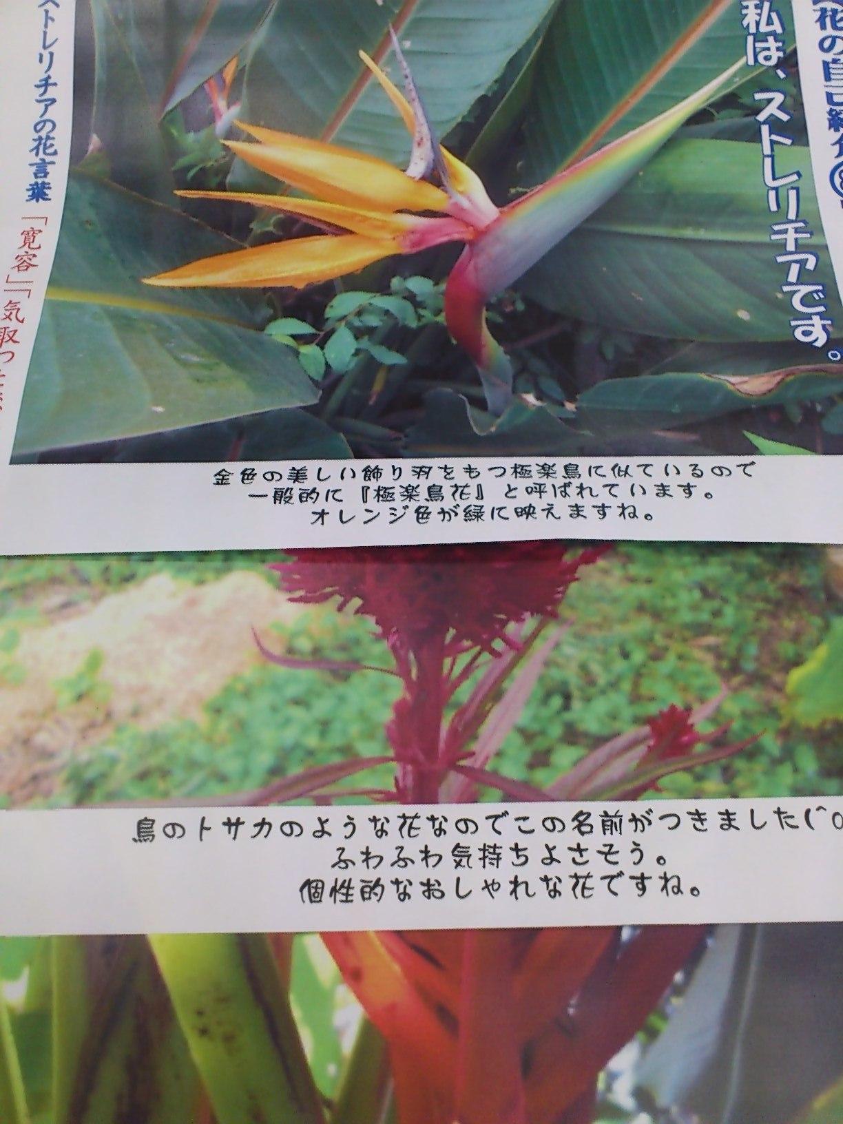 DSC_0102.jpg